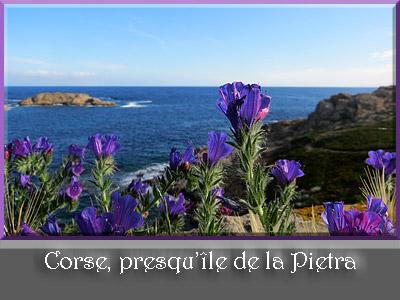 Corse, presqu'île de la Pietra