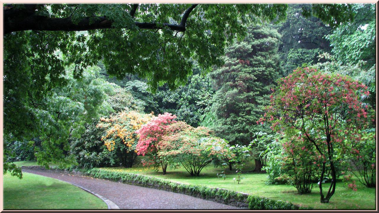 Les jardins de la villa taranto verbania pallanza for Jardin de la villa