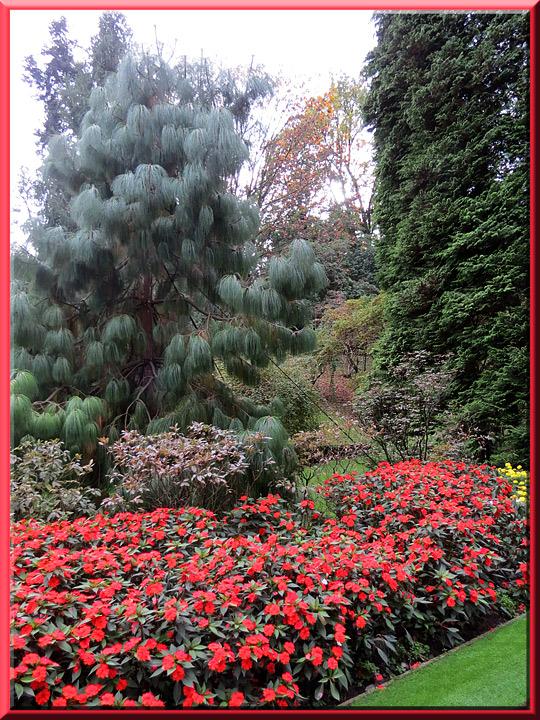 Les jardins de la villa taranto verbania pallanza for Les jardins de la villa