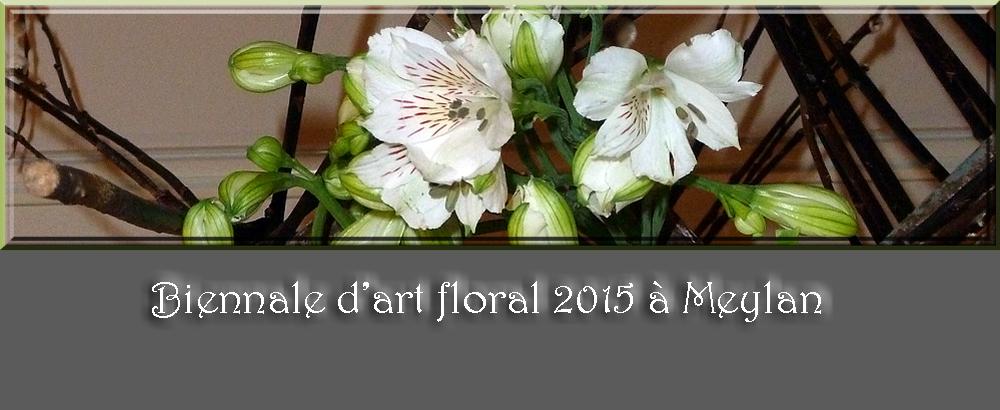 Biennale d'art floral 2015 à Meylan