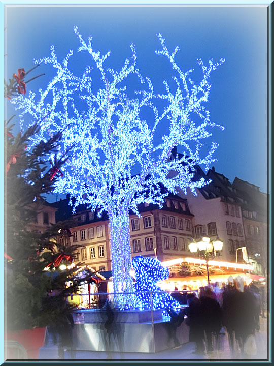 Strasbourg, Noël, arbre bleu