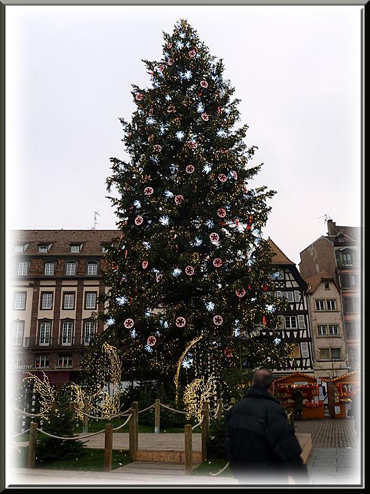 Strasbourg, Noël, sapin, place Kléber