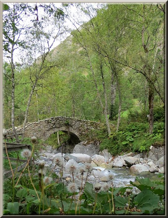 La Chapelle en Valgaudémar, pont des Oules