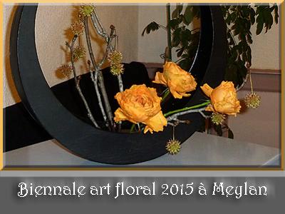 Biennale art floral 2015 à Meylan