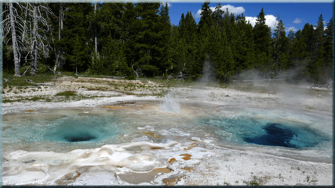 Spasmodic Geyser, Yellowstone
