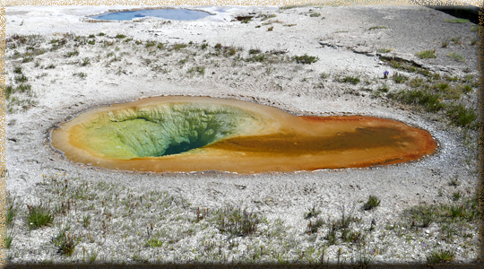 Yellowstone, Belgian Pool